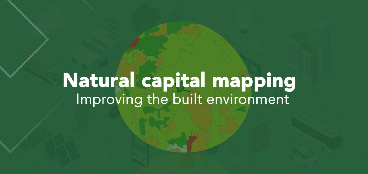 Natural Capital Mapping