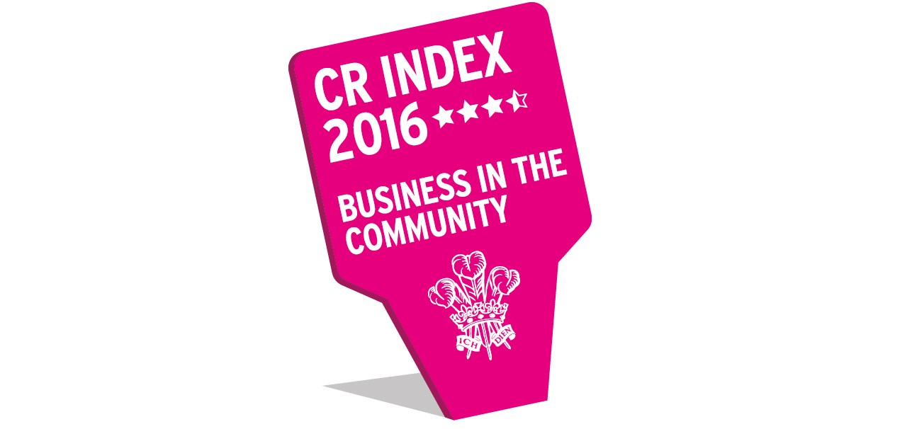 BITC Responsible Business 2016